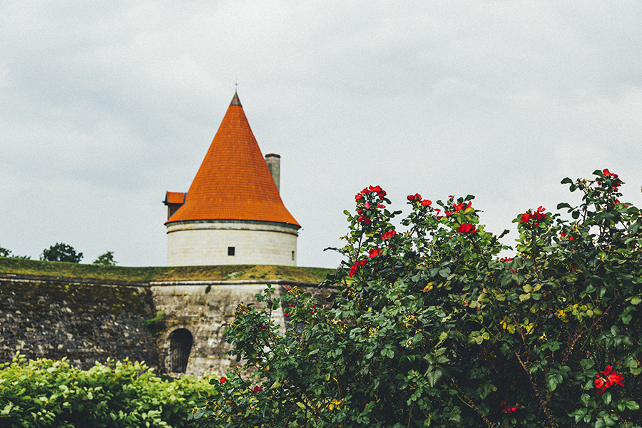 Tower of the Roses