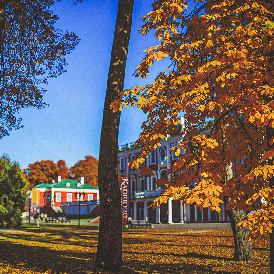 Fall for Kadriorg